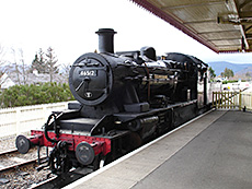 Strathspey Steam